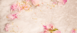 LoveBeCreate FREE Girly Feminine Pink Gold Grey Peony Blog Photo Header