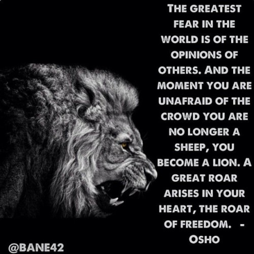no fear quotes